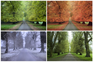 Know your seasons